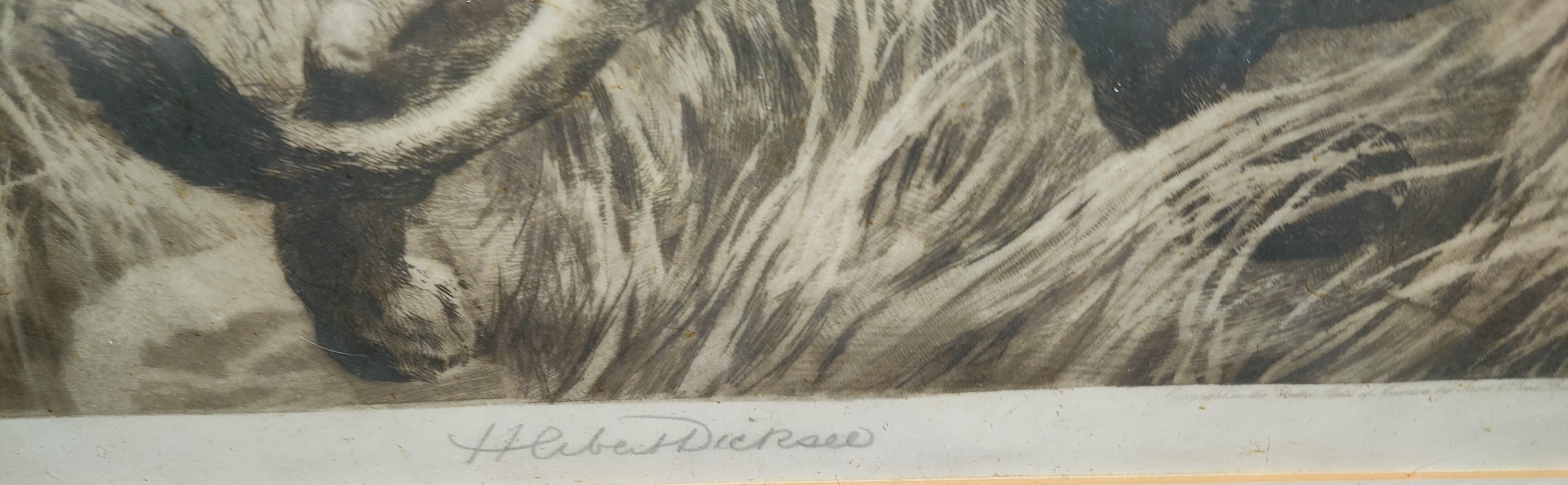 Herbert Thomas Dichsee (1862-1942) Lion & Lioness on a rock outcrop, etching, signed in pencil, - Image 2 of 2