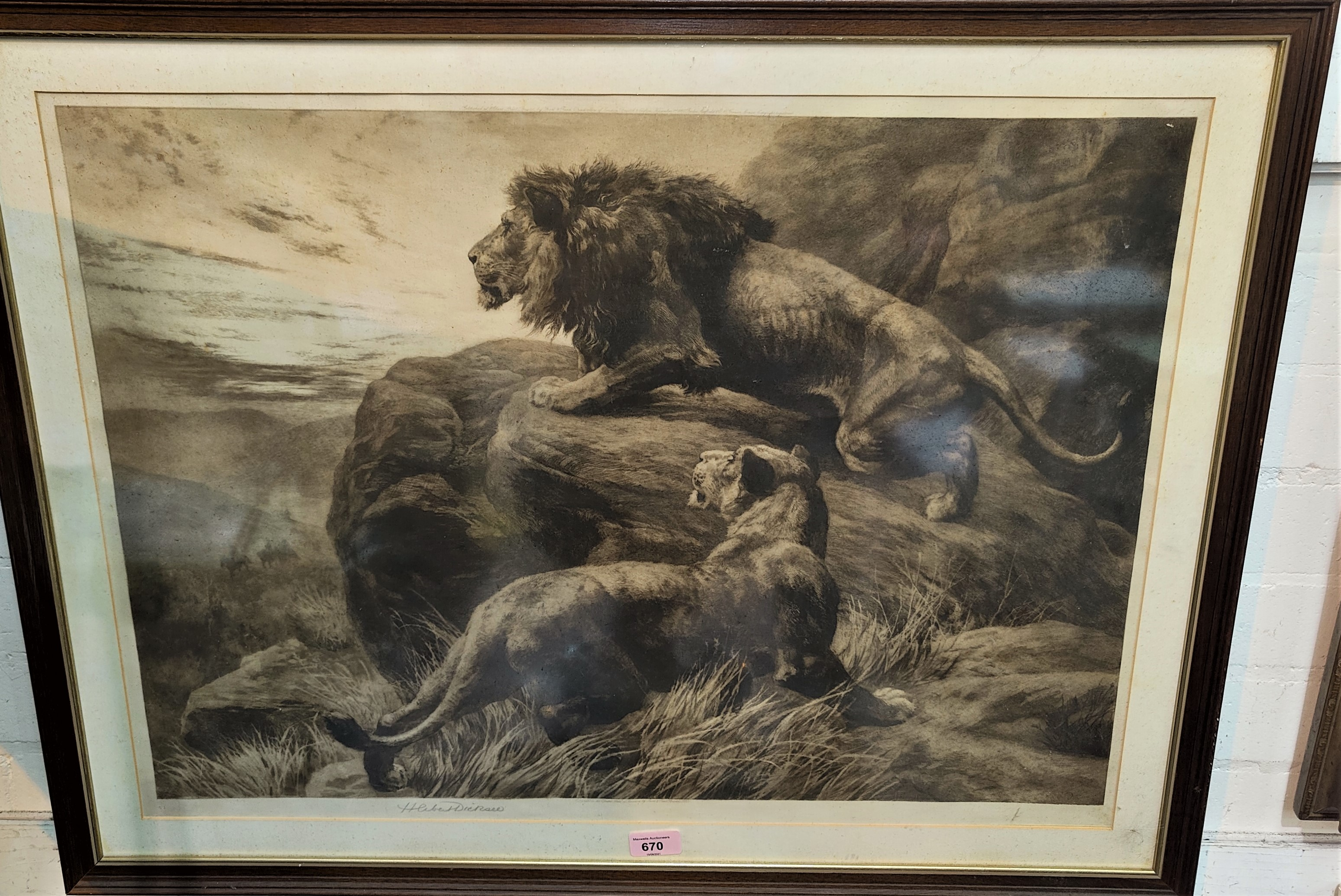 Herbert Thomas Dichsee (1862-1942) Lion & Lioness on a rock outcrop, etching, signed in pencil,