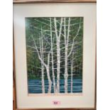 Fumio Fujita, 1933, Japan: colour woodblock print of silver birch trees, signed in pencil, dated