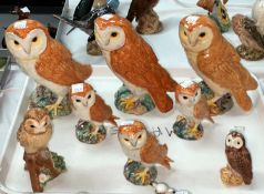 A selection of eight Beswick owls, three large and three small barn and two other owls