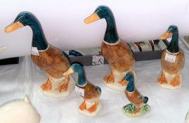 A group of five Beswick graduating mallard ducks, number 756.