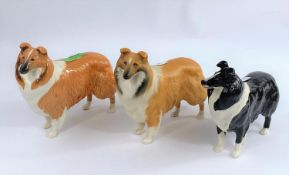 Three Beswick collie dogs: one brown and white, one black and white and one matt glazed, number: