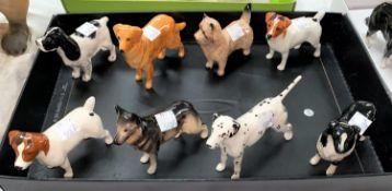 Eight various minature Beswick dogs, Dalmation etc.