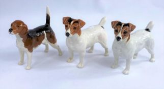 Three Beswick dogs, two Jack Russell Terrier 2023 and a Beagle, Wendover Billy 1933.