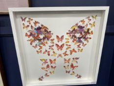 BUTTERFLIES, A DIANE YOUNG PICTURE
