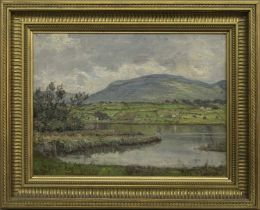THE LAKE ROAD, MULLAGH, AN OIL BY PATRICK DOWNIE