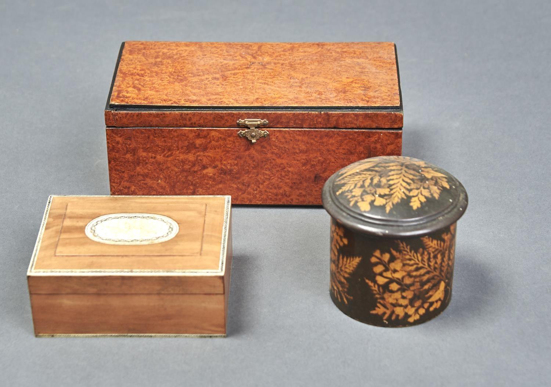 A VICTORIAN AMBOYNA VENEERED RECTANGULAR BOX, THE TOP WITH EBONISED BORDER, THE CORNERS BOXWOOD