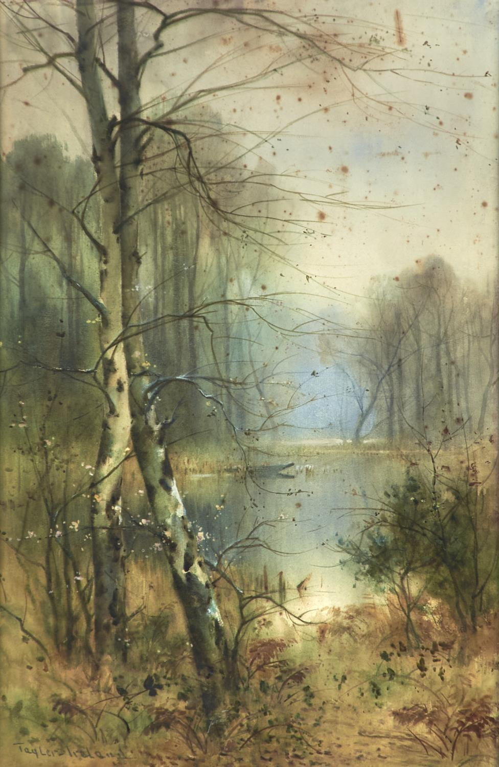 THOMAS TAYLER-IRELAND (1874-1931) - THE BIRCH POOL, SIGNED, WATERCOLOUR, 52 X 34CM Foxing as evident