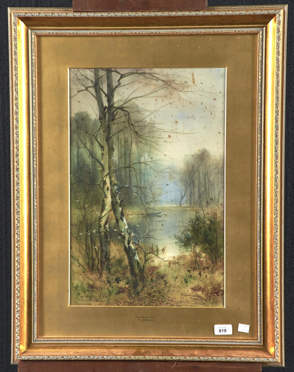 THOMAS TAYLER-IRELAND (1874-1931) - THE BIRCH POOL, SIGNED, WATERCOLOUR, 52 X 34CM Foxing as evident - Image 2 of 2