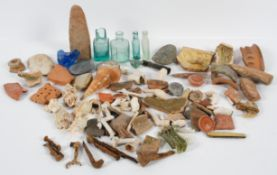 A large collection of assorted fossils and antiquity items, including part mosaic, clay pipes,