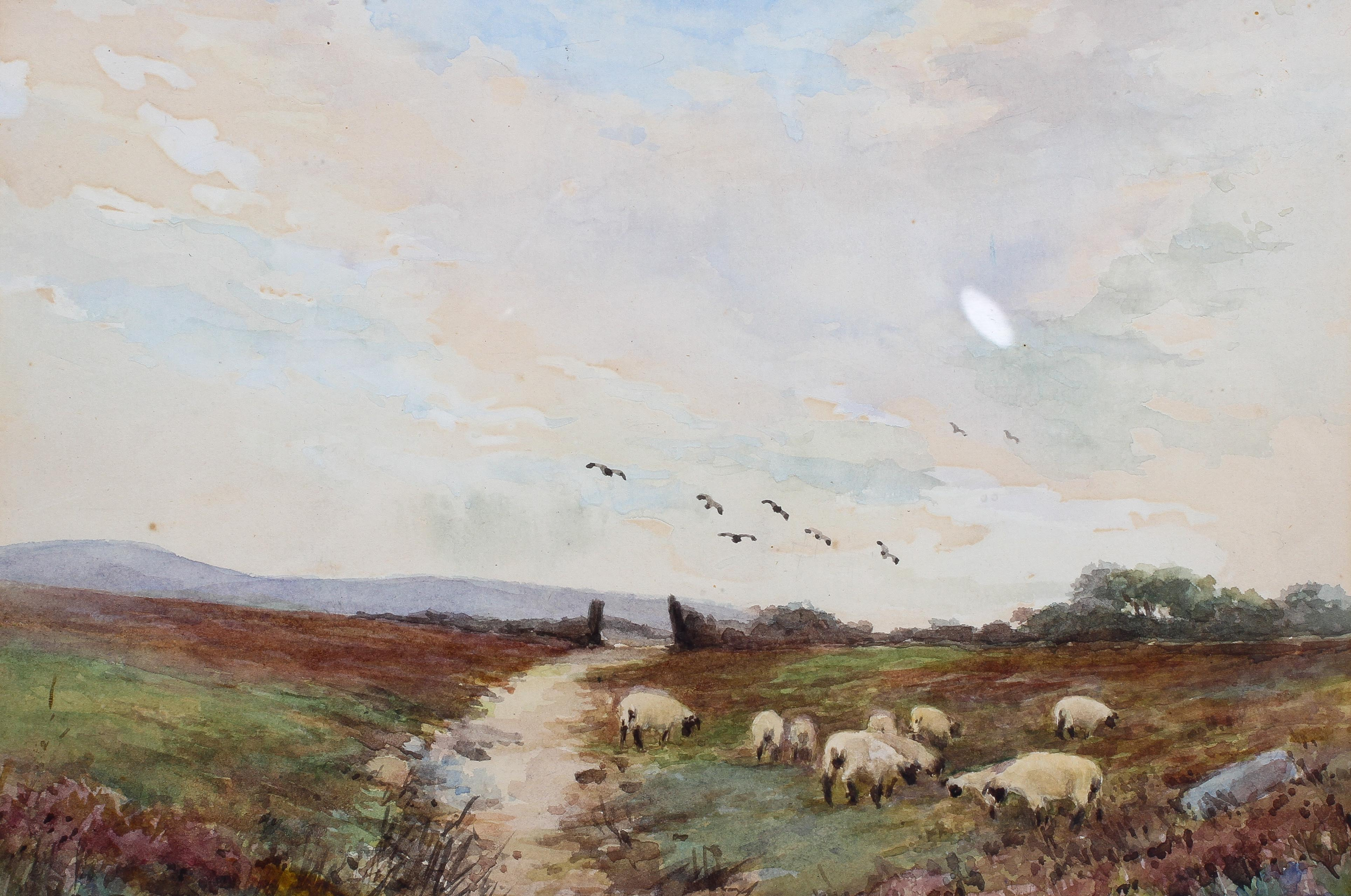Maud, Sheep grazing, watercolour, signed lower left, - Image 3 of 3