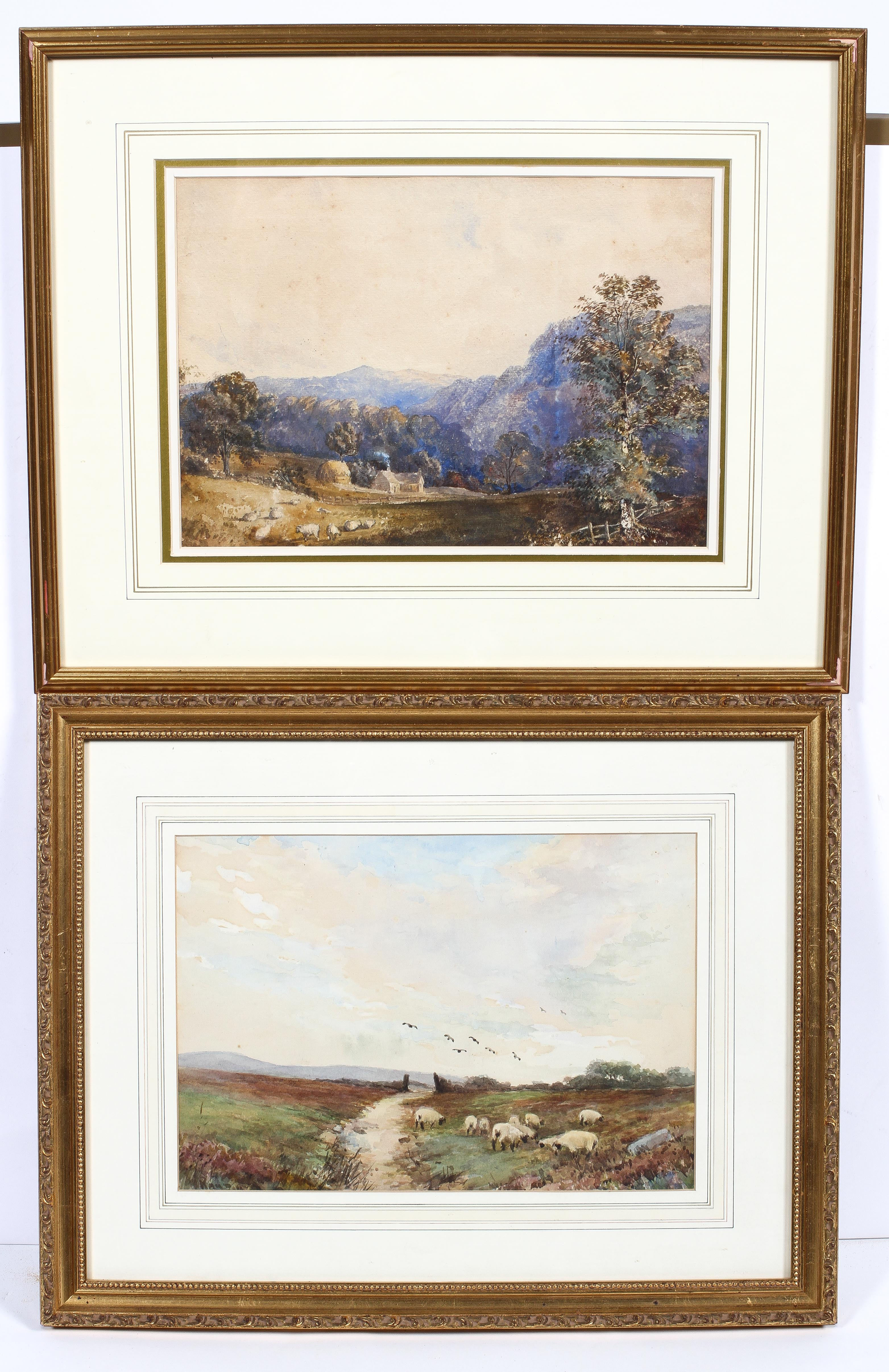 Maud, Sheep grazing, watercolour, signed lower left,