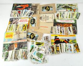 Seven Tea cards and Book sets/albums including African wildlife, Asian wildlife,