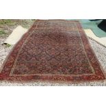 A Bidjar carpet, the indigo herati field within a rose palmette patterned border with two guards,