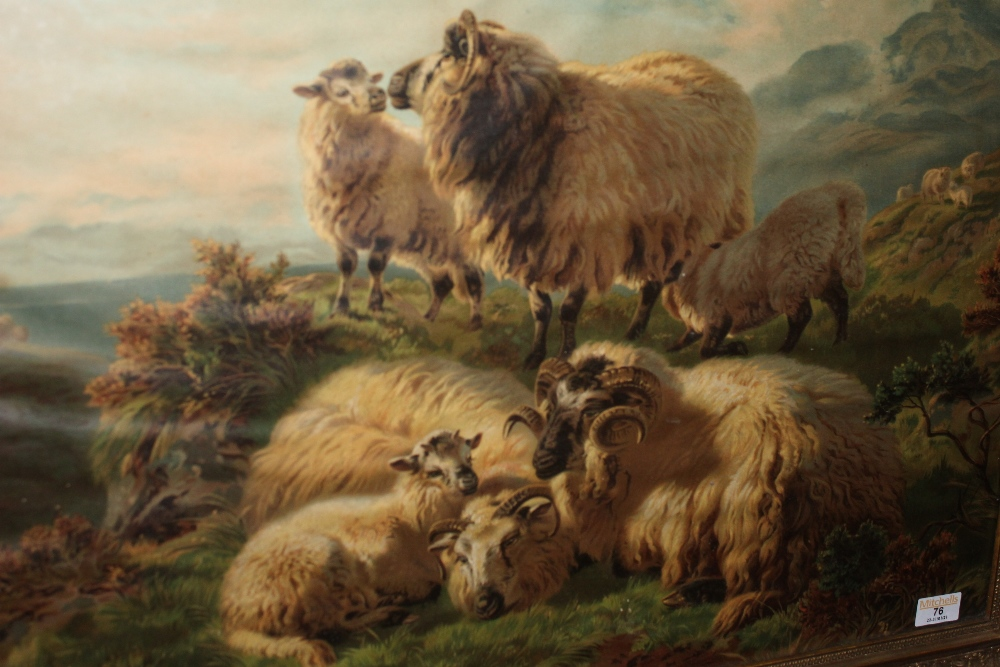 A Victorian coloured lithograph of sheep - Image 2 of 2