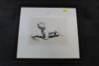 Cecil Aldin (1870-1935), etching, portrait of a West highland terrier, 16 cm x 20 cm,