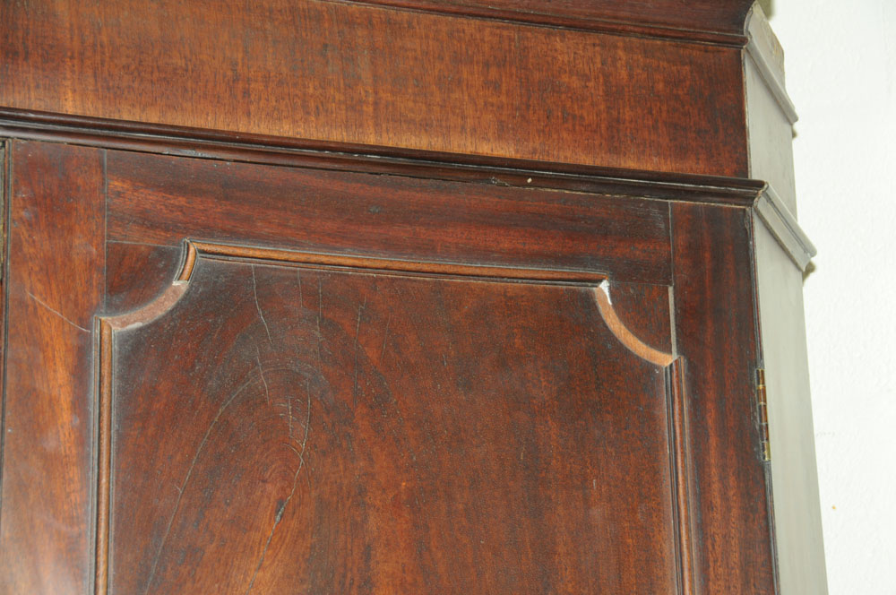 An early 19th century mahogany standing corner cupboard, - Image 9 of 13