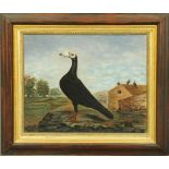 A 19th century Naive School - oil painting - portrait of a racing pigeon with pigeon loft and