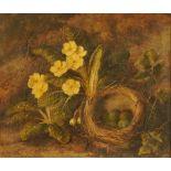 Frederick Stanier, oil on canvas, still life of birds nest with primrose. 30 cm x 35 cm.