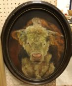 """20TH CENTURY ENGLISH SCHOOL """"Study of bull"""", oil on canvas, indistinctly signed lower right,"""