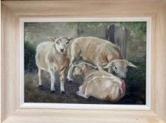 """""""Sheep"""" Original oil painting on canvas (framed) by a local artist 45cm x 35cm Donated by John"""