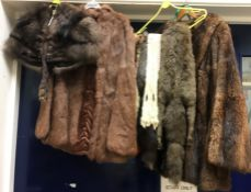 A collection of furs to include an ermine fur tippet, fox fur tippet,