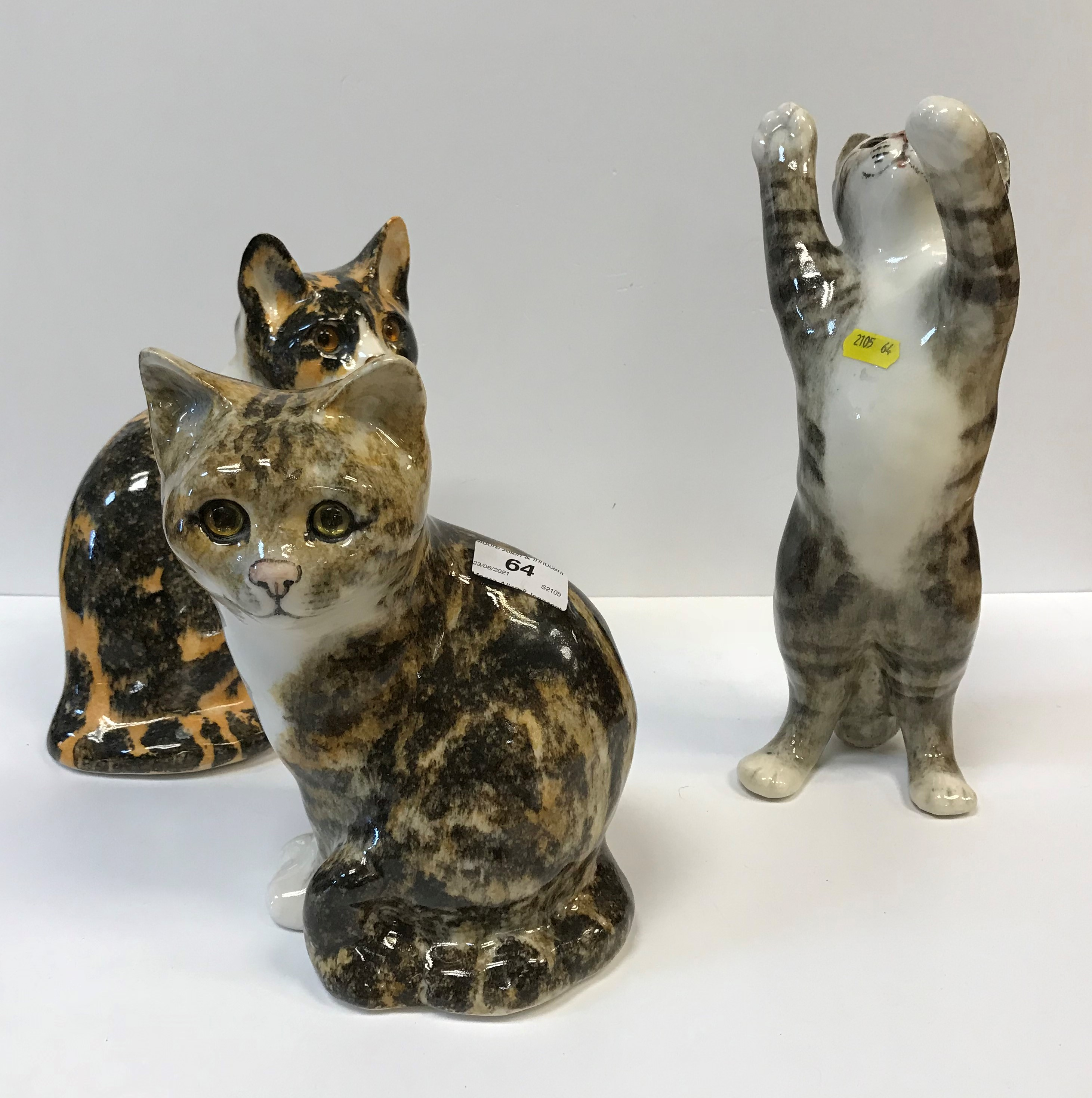 A collection of three large Winstanley pottery glass eyed Cat figures, various colours and poses,
