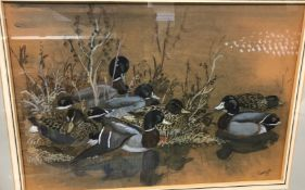 """CHARLE FREDERICK TUNNICLIFFE """"Mallards resting"""", watercolour heightened with white, signed lower"""
