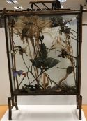 A Victorian bamboo framed fire screen display cabinet containing a taxidermy stuffed and mounted