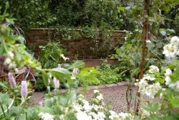 Gardening time - 3 hours of general gardening work in Cirencester or nearby-John Plant