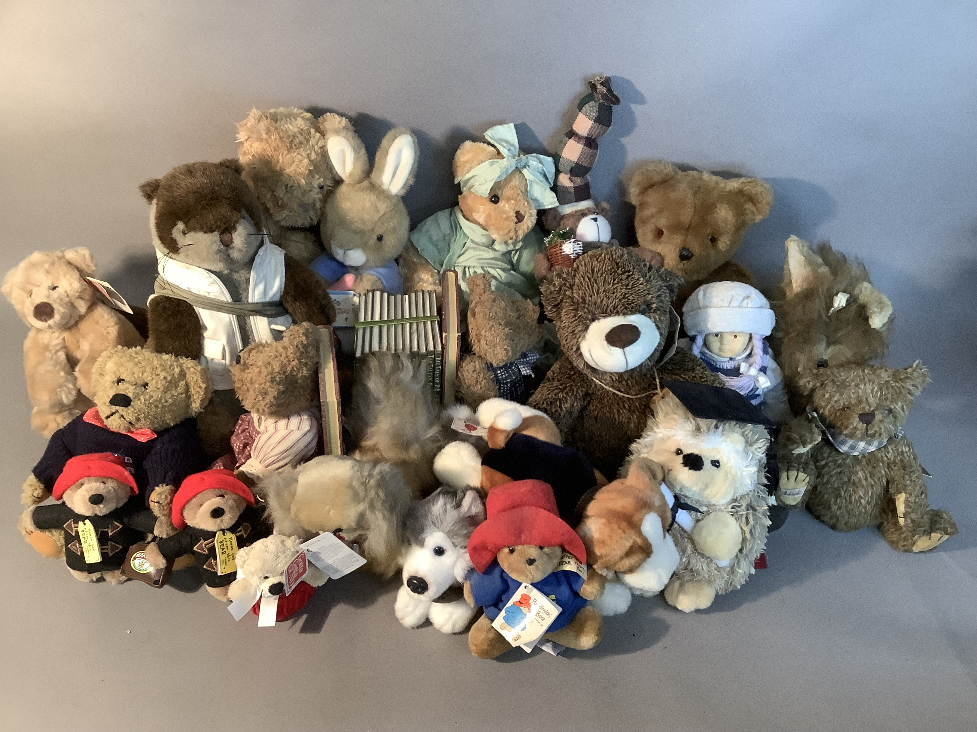 A quantity of miscellaneous plush and other soft toys, various sizes by various manufacturers
