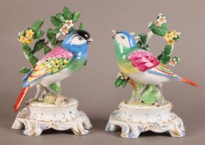 A pair of Continental porcelain figures modelled as a pair of colourful songbirds before leaf and