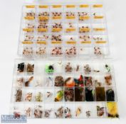Assorted Fishing Fly Selection – incl case of hopper and daddy bug leg flies sorted into
