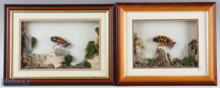 2 Eric Sayers of Preston Framed Salmon Flies both in 3d frames with scenic decorations, frames
