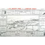 1939-1945 Emergency, Leix-Offaly Local Defence Force Landscape Target. A two-colour, musketry