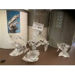 Collectables : Swarovski Crystal inc The Whale SCS