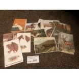 Postcards : 70 animals on cards - all art drawn -