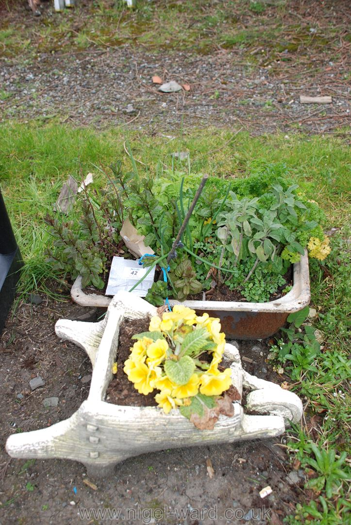 Small planted wheelbarrow and a bowl of herbs - Image 2 of 3
