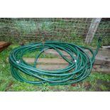 A coil of reinforced garden hose.
