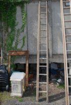 A thirteen rung single extension wooden Ladder.
