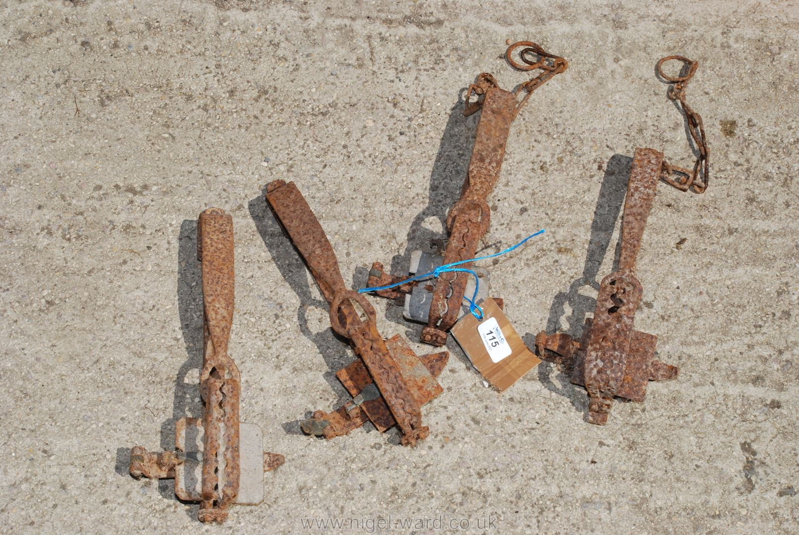 Four animal traps (for display purposes).