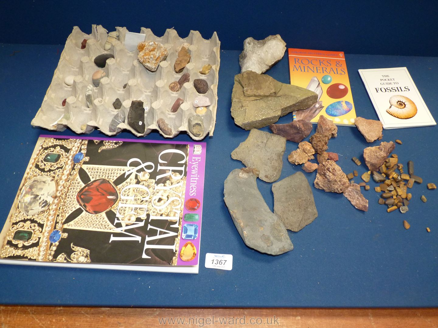 A quantity of fossils, rocks, stones and crystal, Pocket Guide to Fossils,