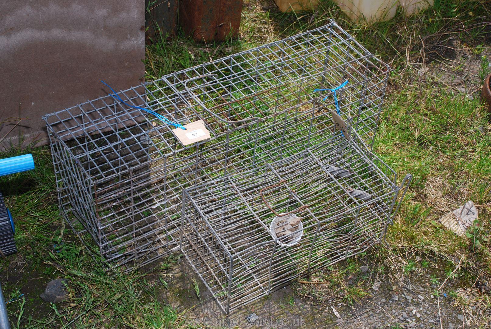 Two metal animal traps