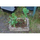 Herb planted lightweight planter