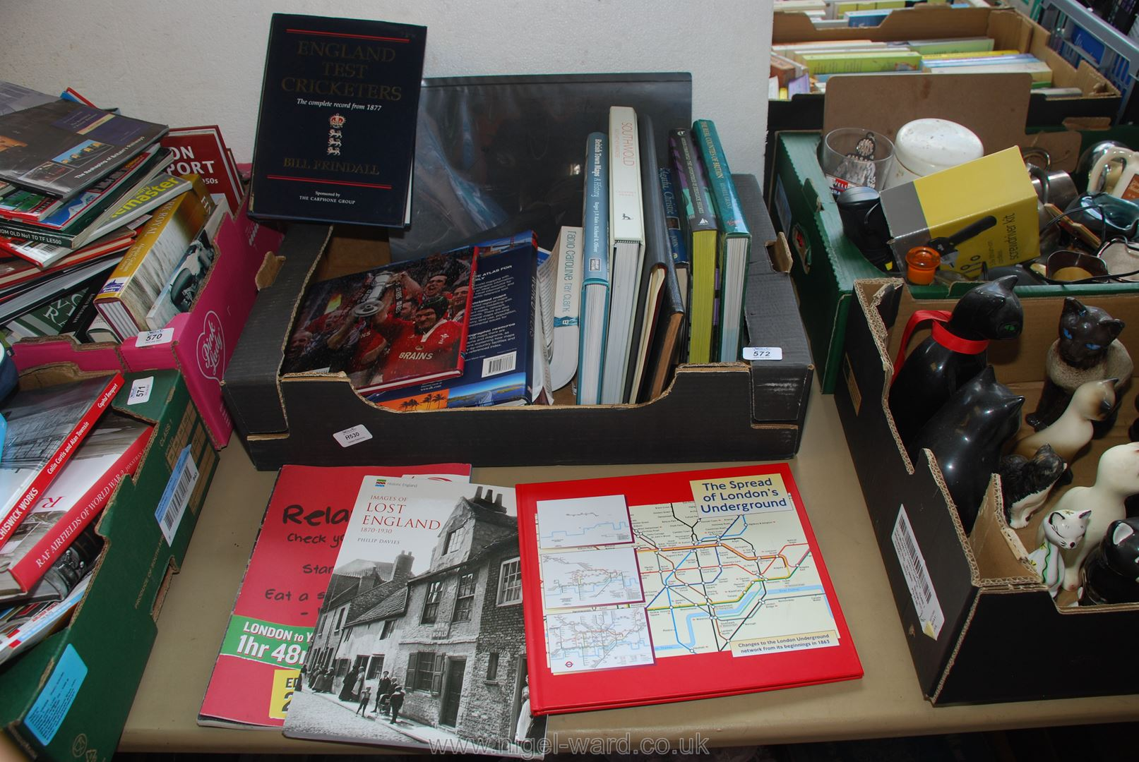 Quantity of books including English Test Cricketers,