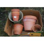 Quantity of terracotta flower pots up to 9'' diameter