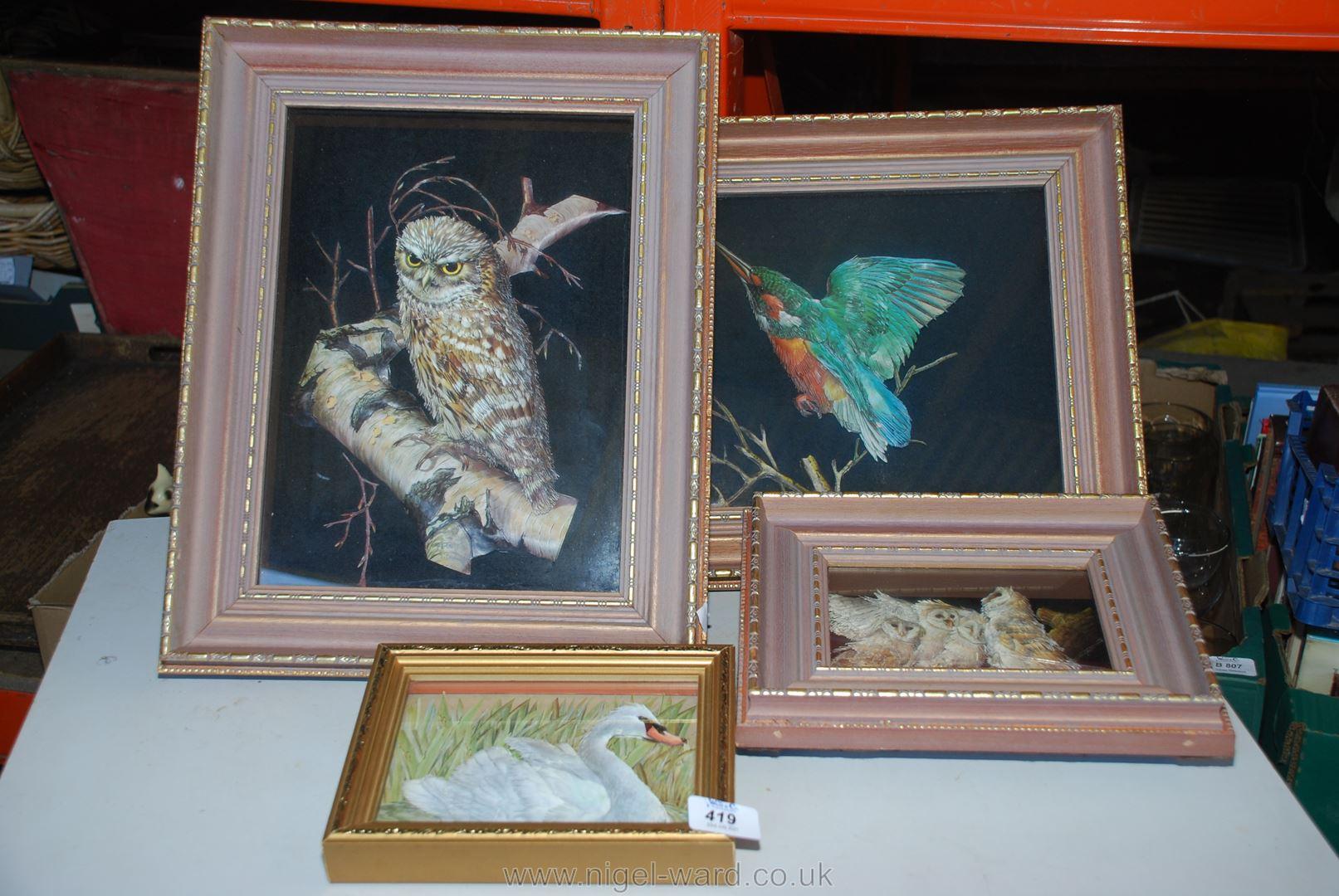 Four Dioramas of birds