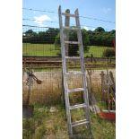 Eight rung aluminium extending ladder