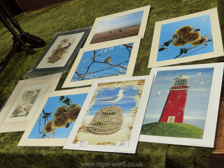 Quantity of mounted prints,