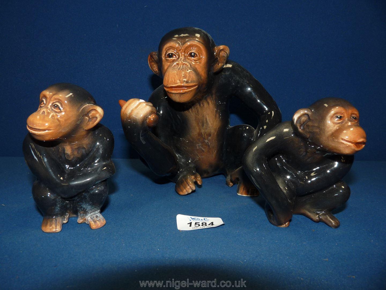 Three Sylvac seated Chimpanzees, 7'' and 4'' tall,